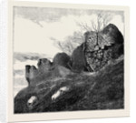 Ruins of Northampton Castle. by Anonymous