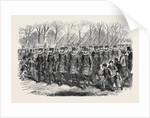 The Royal Drawingroom: Yeomen of the Guard Marching to Buckingham Palace UK 1869 by Anonymous