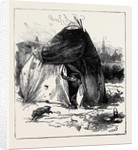 Gipsy Life Round London: Tent at Hackney 1880 by Anonymous