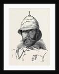 Major P.L.N. Cavagnari C.S.I. Political Officer with the Peshawur Field Force 1879 by Anonymous