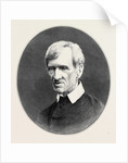 Cardinal Newman 1879 by Anonymous