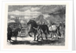 Suffolk Cart Horses at the Exhibition of the Royal Agricultural Society at Bury St. Edmunds 1867 by Anonymous