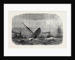 Wreck of the Greek War-Steamer Bouboulina Destroyed by Explosion at Liverpool UK 1867 by Anonymous