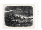 Animals Taking Refuge from a Prairie Fire by Anonymous