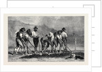 Field Labourers, in the International Exhibition 1871 by Anonymous