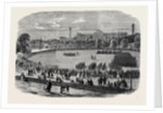 Review at the Crystal Palace of Cadets Attached to Metropolitan and Suburban Volunteer Corps by Anonymous