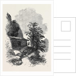 The Abysinnian Expedition: The Church at Goun-Gouna 1868 by Anonymous
