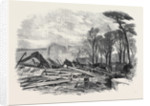 The Gale of Last Week Ruins of the North Wing of Sydenham Crystal Palace February 1861 by Anonymous