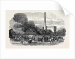 Explosion at the Government Gunpowder Works Near Waltham: The Powder Mills after the Explosion 1861 by Anonymous
