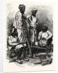 Jat Zemindars (Crown Lessees) and Ryots (Peasants) by Anonymous