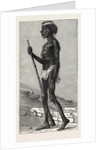 Djangal, Native of the Sirgouja by Anonymous