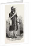 Gentleman of Sindh by Anonymous