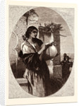 A Spanish Gipsy, Spain by Anonymous