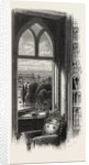View from the Library Window by Anonymous