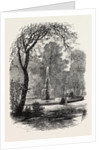View in Chester Square, Boston by Anonymous