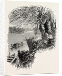 On the Savannah River by Anonymous