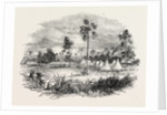 Encampment at Jaswong, Gambia, West Africa by Anonymous