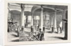 The Museum of Practical Geology, the Great Hall by Anonymous