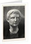 The Castellani Collection at the British Museum: Marble Head of Young Augustus by Anonymous