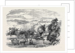Sketches in the Crimea: The Road to Baidar by Anonymous