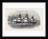 The Liverpool and Australian Steam Navigation Company's New Steam Clipper Royal Charter by Anonymous