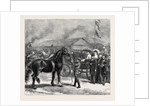 The Royal Agricultural Society's Show at Bedford, Horse Parade Before the Crown Prince and Princess of Germany, July 25, 1874 by Anonymous