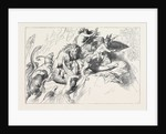 A Wild Beast Fight During the Deluge by Anonymous