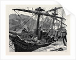 Kit, a Memory; a Sailor Fell from the Mainmast of a Ship in Mogadion Harbour, and Fractured His Skull by Anonymous