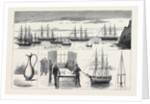 St. Helena: The Detached Squadron at Anchor by Anonymous