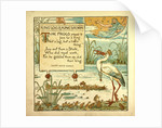 King Log and King's Stork by Anonymous