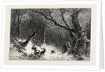 A Scandinavian Forest in Winter by Anonymous