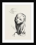 A Middle Age Lion by Anonymous
