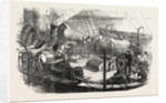 Shipping Artillery Horses at Calais for the French Expeditionary Force to the Baltic 1854 by Anonymous