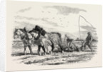 Ploughing in France by Anonymous