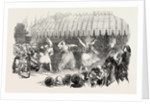Marriage of the Sultan's Daughter Fete at Baltaliman 1854 by Anonymous