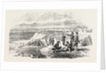 The Camp at Slobodzie 1854 by Anonymous