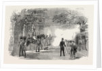 Firing the Park Guns for the Great Victory in the Crimea 1854 by Anonymous