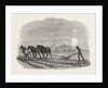Agricultural Pictures: Ploughing, 1846 by Anonymous