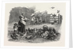 Agricultural Pictures the Poultry-Yard, 1847 by Anonymous