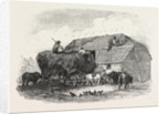 Agricultural Pictures: Thatching, 1846 by Anonymous