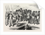 A Strike at Sierra Leone, 1874 by Anonymous