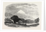 An Exploring Party on the West Coast of New Zealand: Encampment in the Teramakau Valley, 1865 by Anonymous