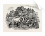 Agricultural Pictures: Sheep-Washing, 1846 by Anonymous