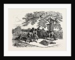 Agricultural Pictures: Sheep-Shearing, 1846 by Anonymous