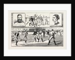 La Crosse Match, Played Last Saturday at Kennington Oval, by North of England against South, 1883 by Anonymous