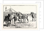 A Parade in Front of the Pavilion in Mr. Gilbey's Paddocks at Elsenham by Anonymous