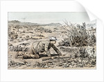 A Hunter in South Africa by Anonymous