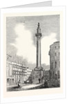 View of the Monument by Anonymous