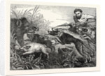 Wild Boar-Hunting by Anonymous