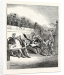 A Roman Horse-Race: Horses Preparing to Start by Anonymous
